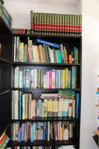Boeken voor de zomer